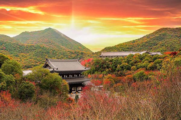 Cảnh sắc nên thơ của Vương đường Phật giáo Nhật Bản