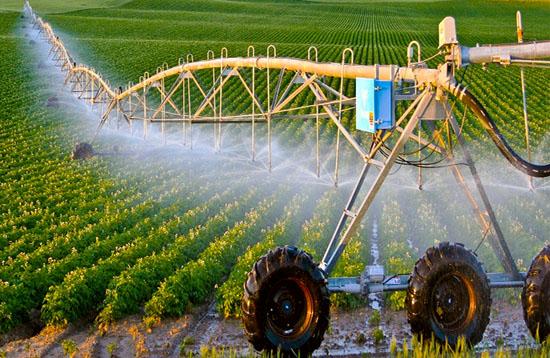 Hokkaido là vùng đất phát triển nông nghiệp hiện đại của Nhật Bản