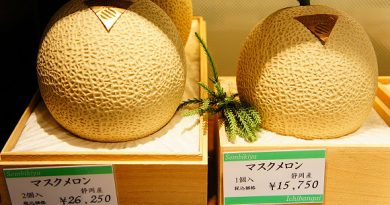 Những điều thú vị về Nhật Bản