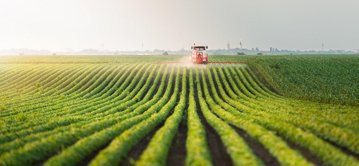 Nền nông nghiệp hiện kểu mẫu của Nhật Bản hiện nay