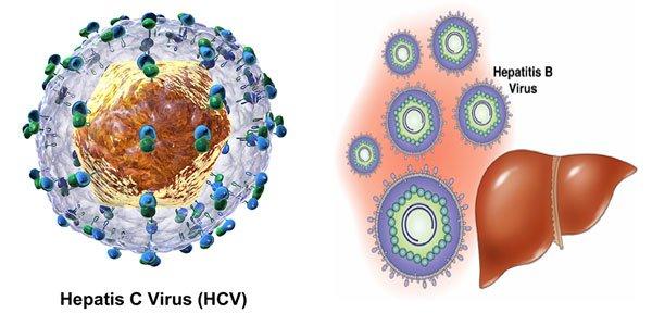 Bị viêm gan B, C không đủ điều kiện sức khỏe đi xklđ Nhật Bản