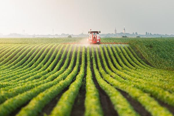 Tại Nhật ngành nông nghiệp cực kỳ phát triển, ứng dụng công nghệ cao