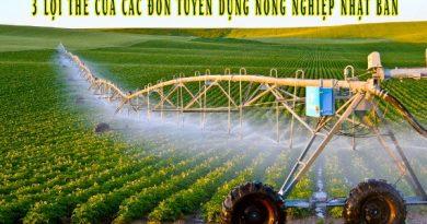 3 lợi thế xuất khẩu lao động Nhật Bản ngành nông nghiệp