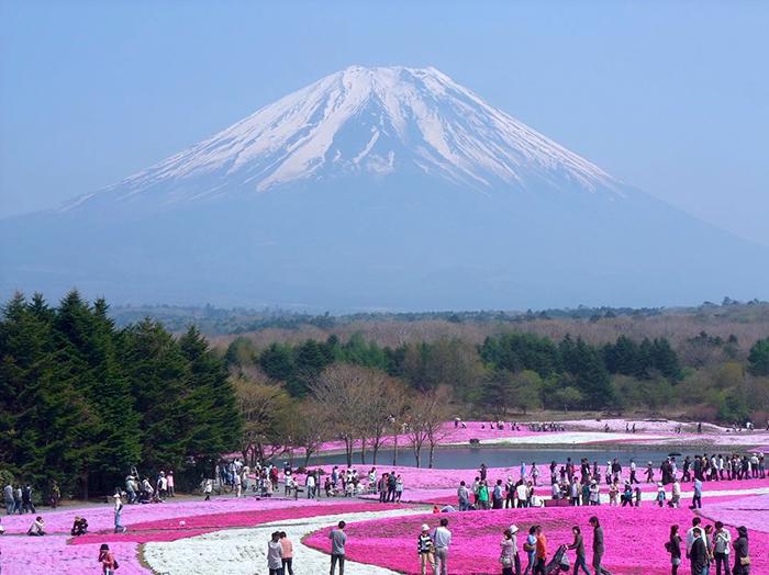 Thành phố du lịch nổi tiếng Saitama