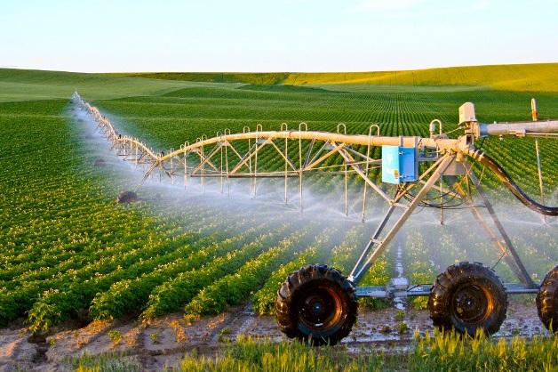 Ngành nông nghiệp Nhật Bản được áp dụng khoa học kỹ thuật tiên tiến nhất