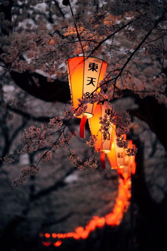 Lễ hội hoa anh đào Hanami