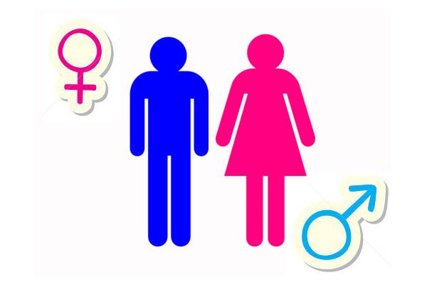 Vai trò truyền thống của nam và nữ trong văn hóa làm việc của một quốc gia.