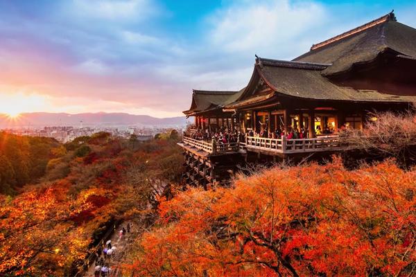Cảnh sắc ấn tượng của mùa thu Nhật Bản