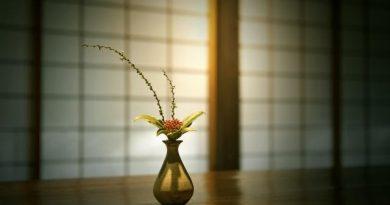 Tìm hiểu về Ikebana: Nghệ thuật cắm hoa truyền thống của người Nhật Bản