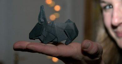 Origami giúp con người cân bằng tâm lý