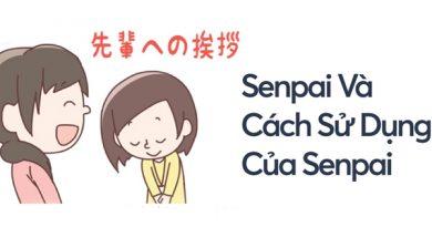 Senpai là gì? Khi nào thì dùng từ senpai trong giao tiếp tiếng Nhật?