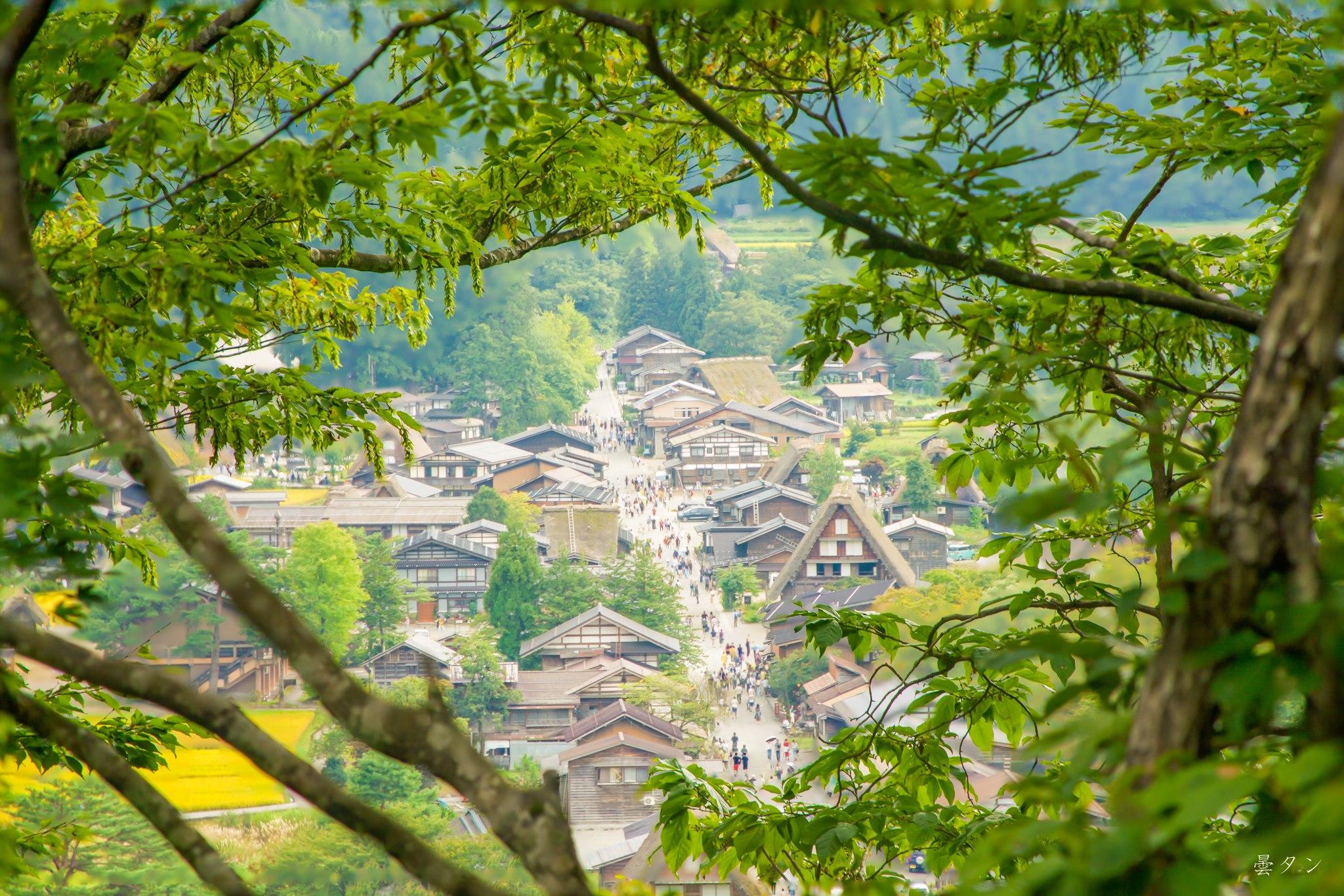 Làng cổ shirakawago mùa hè qua một góc chụp thú vị