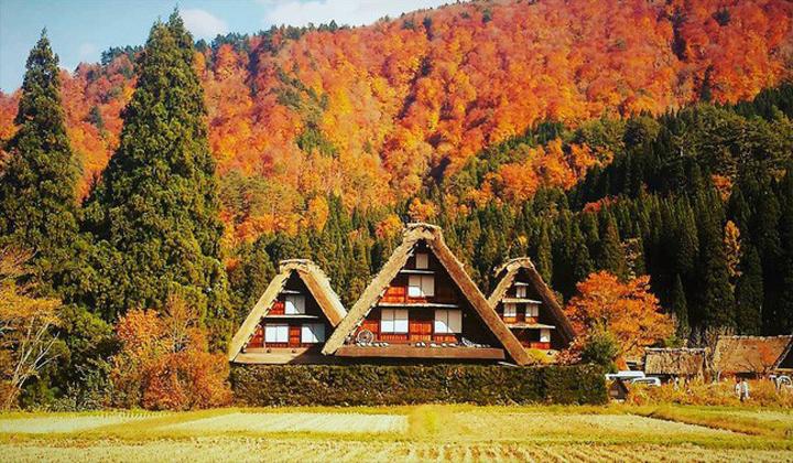 Làng cổ shirakawago mang những gam màu đậm chất thu Nhật Bản