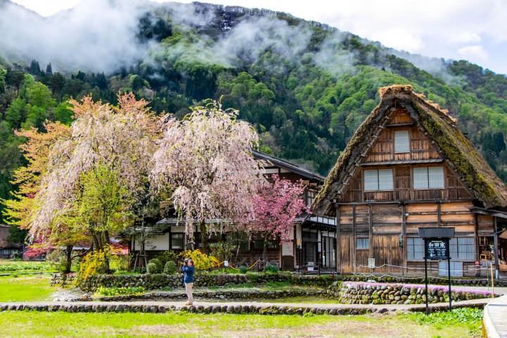 Làng cổ shirakawago mùa xuân